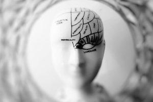 alzheimer'da beyin yapısı ve davranış